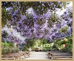 세계꽃식물원